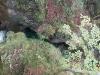 korita-mostnice_5-pogled-s-hudic48devega-mostu